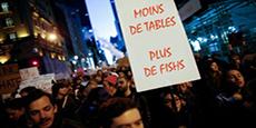 Image de couverture de l'article Récit de Jonathan Salamon : partie 8 : Moins de tables, plus de fishs