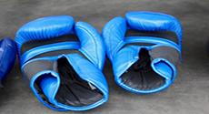 Image de couverture de l'article la discipline